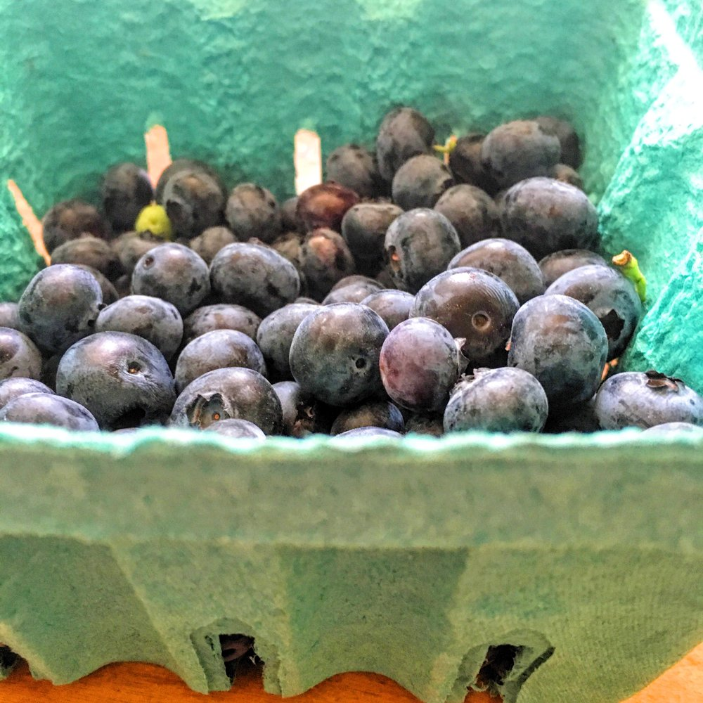 Weaver's Orchard Blueberries