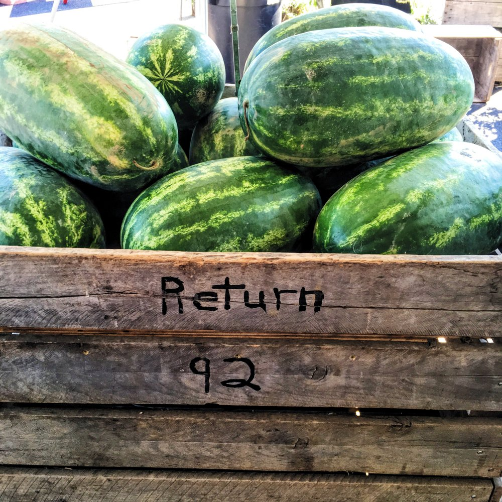 Weaver's Orchard Watermelon