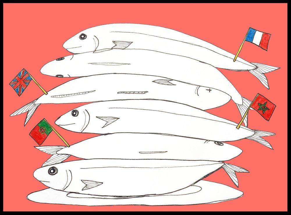Major Migrations