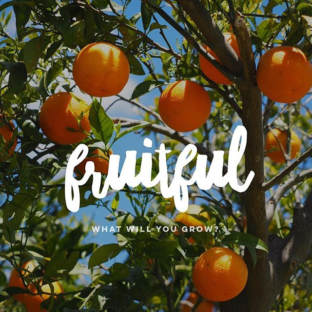 Author, Mike Breen defines life's capitals as financial, intellectual, physical, relational, and spiritual. Each area both requires investment and can be leveraged to grow the others. This Sunday we start a new series looking at Jesus' words about investment, fruitfulness, and wise living.