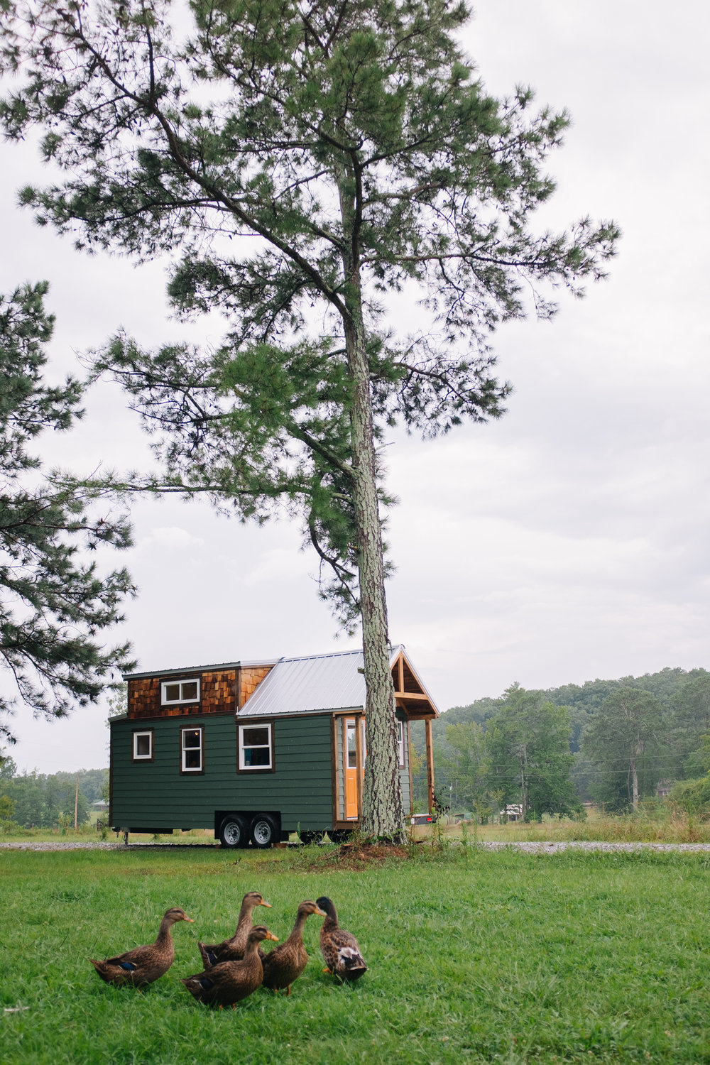 The Acadia by Wind River Tiny Homes - tiny house, craftsman home, cedar shake, rustic, ducks