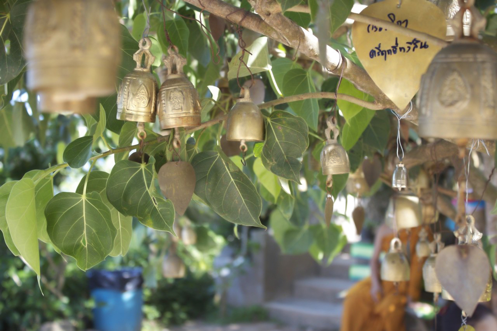 Temple Tree Bells.jpg