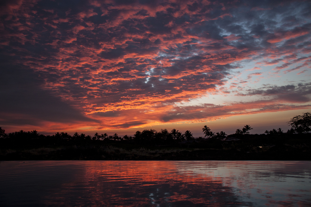 Mama Chipps Sunset.jpg