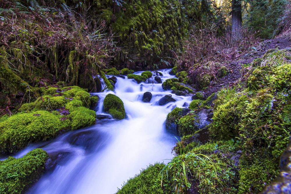 Bridal Veil Creek, OR