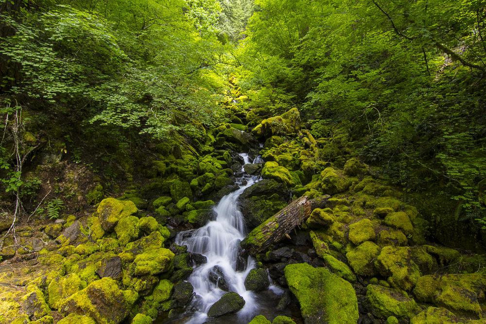 Falls Creek, OR