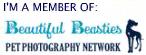 South-Caroina-Children-Pet-Photographybeautiful-beasties.jpg