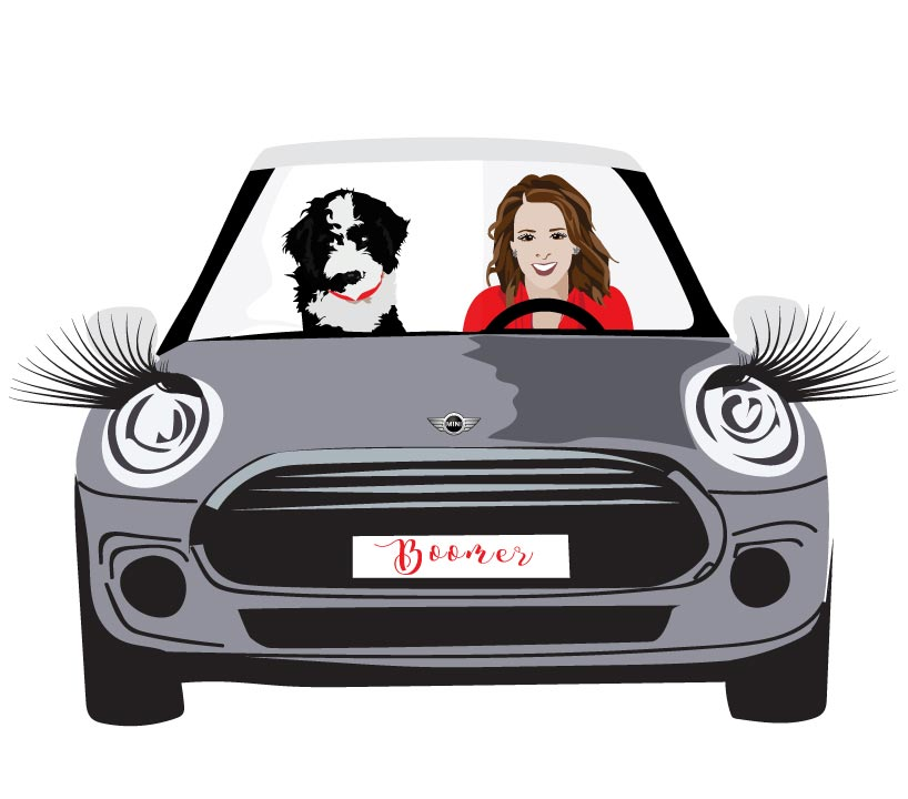 Final Design of Custom Portrait illustration - Here is the final design that Christie approved. It is a beautiful vector illustration of her friend Julie in her mini with her dog. This type of design works wonderfully for birthday gifts and invitations.