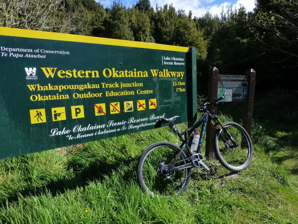 West Okataina Walkway Dual Use Trail Mountain Biking