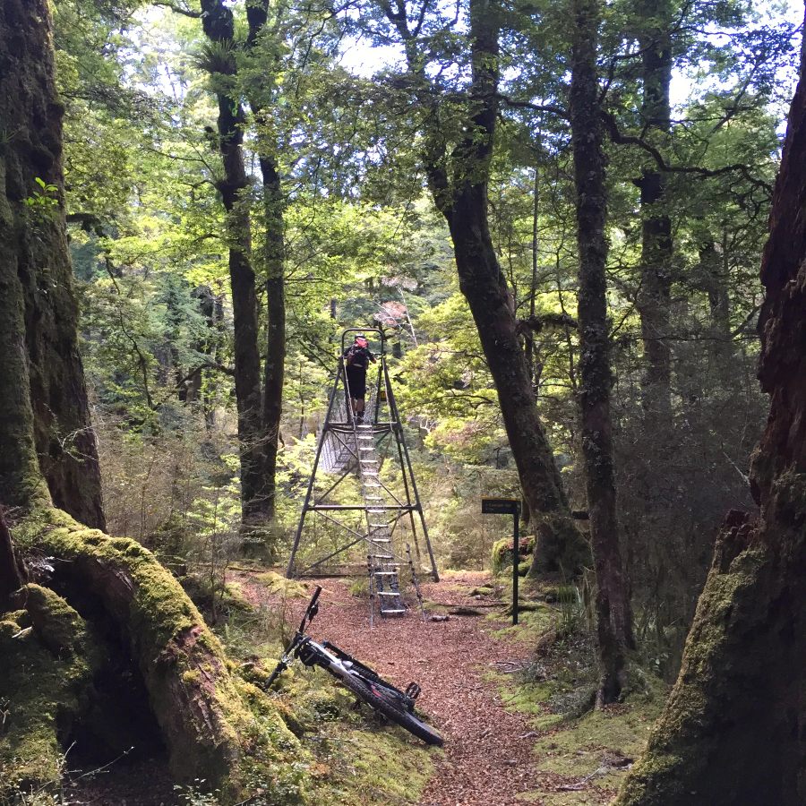 New Zealand Mountain Biking - Te Iringa Trail