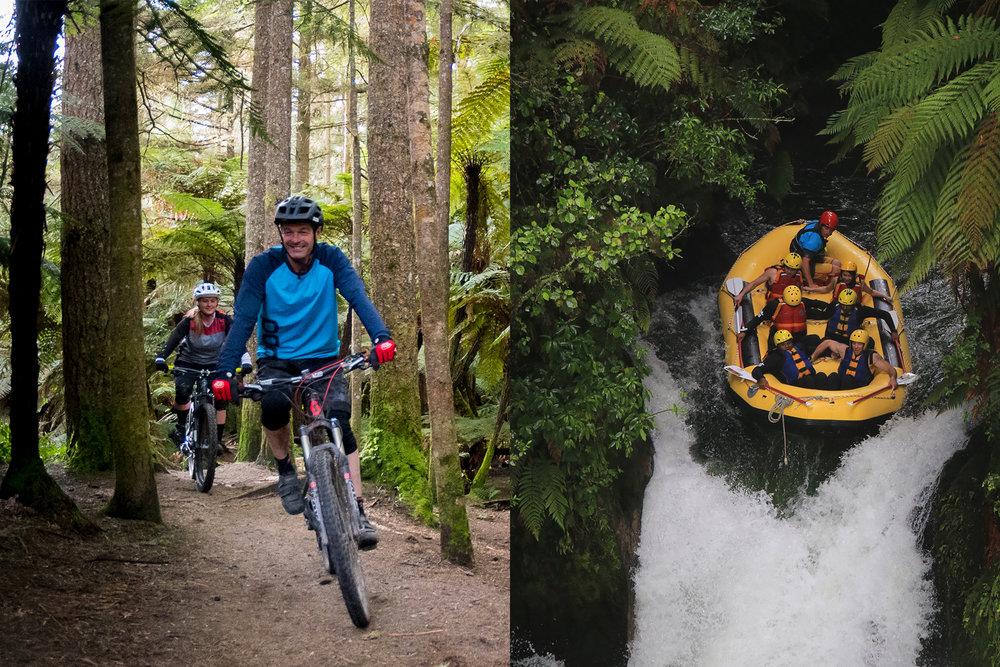 Guided mountain biking Rotorua