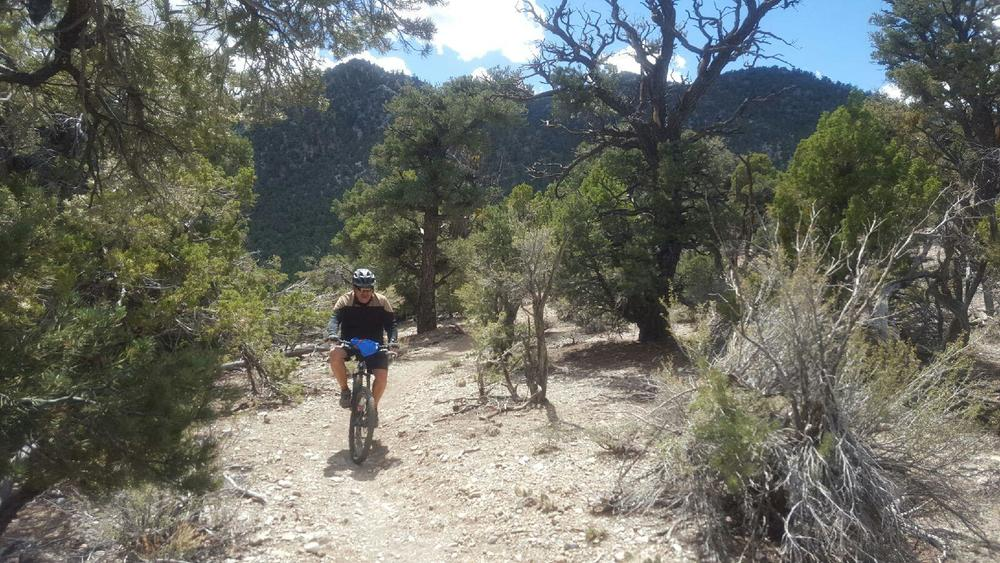 Al Martinez riding a trail in Nevada