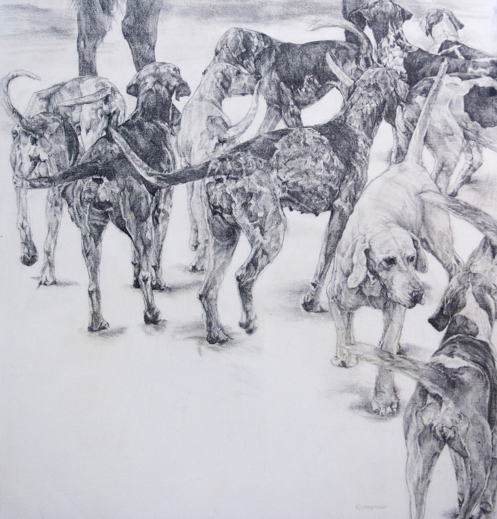 """Hounds at the Hunt - Study""  Pencil on Canvas    48 x48  NA"