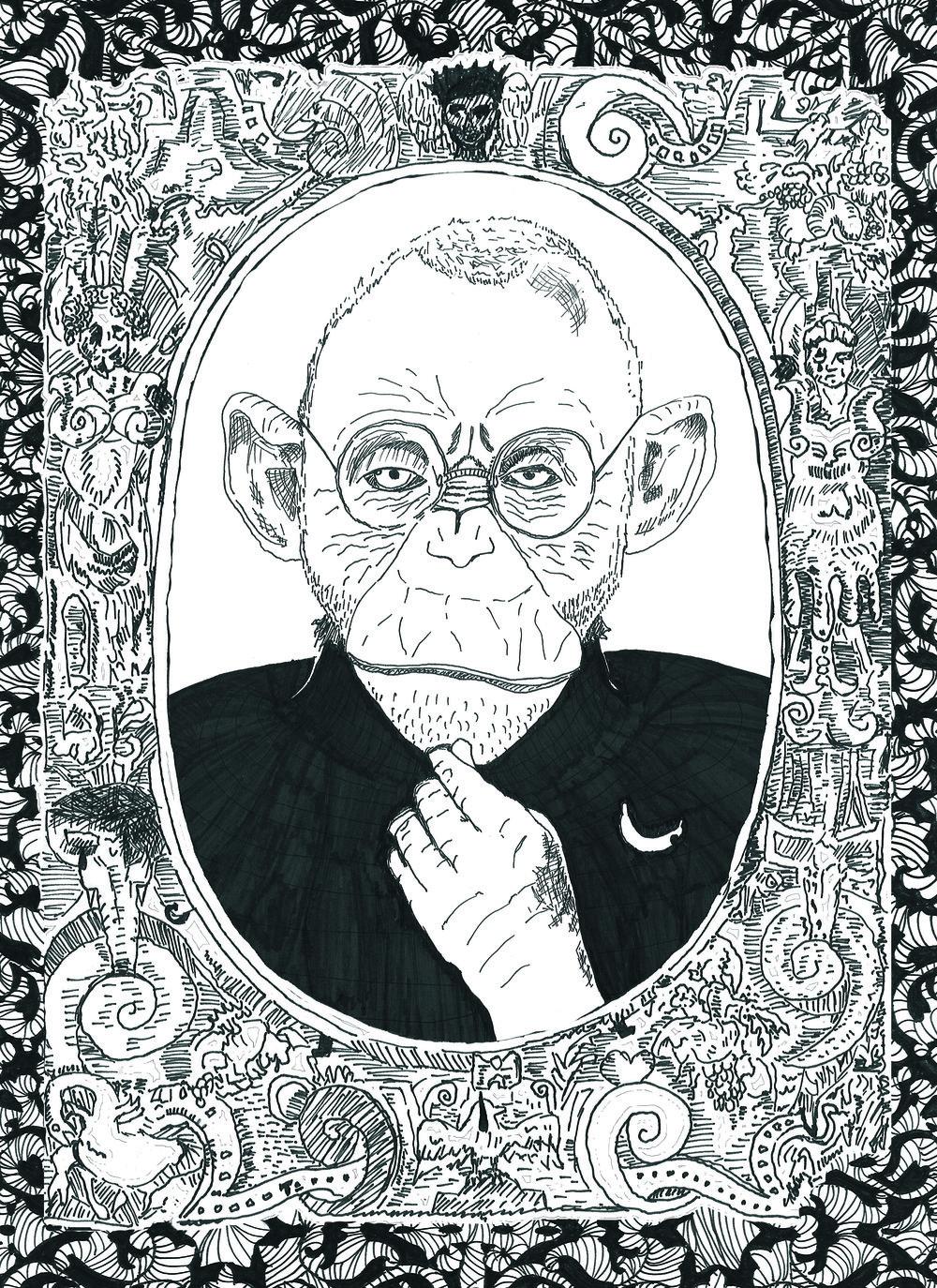 Anti_08_chimp.jpg