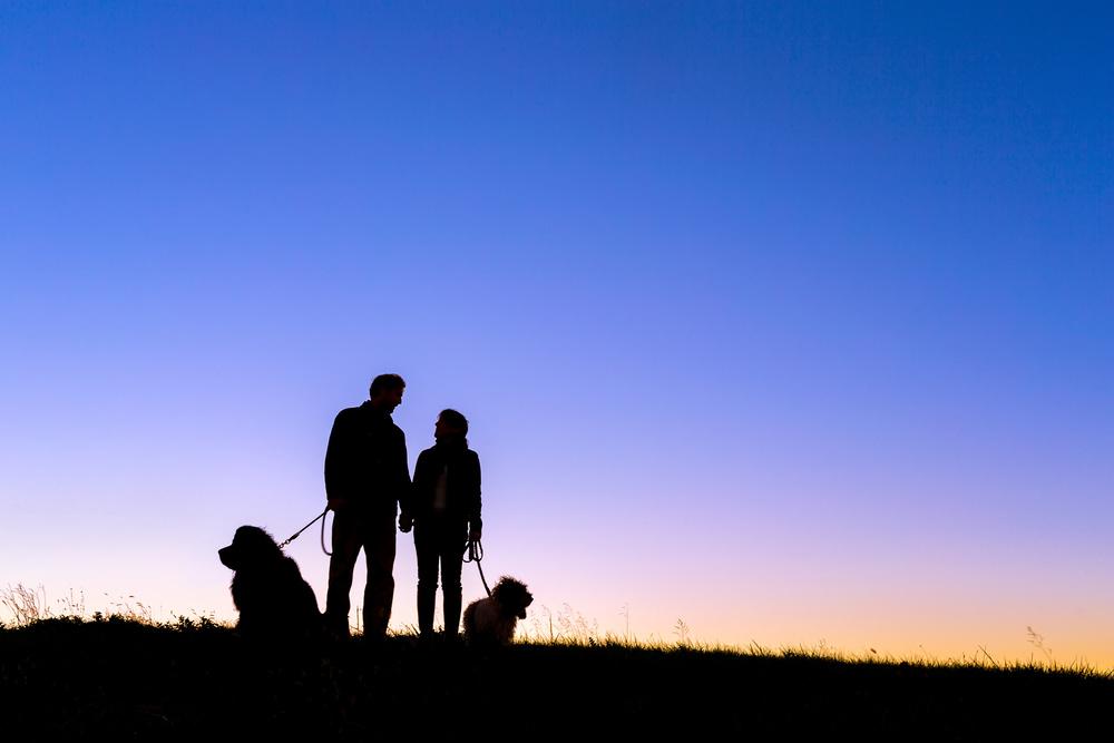 pet-photography-washington-dc.jpg