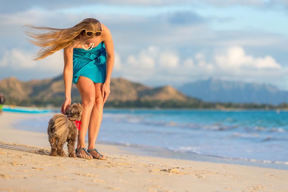 dog-photography-md.jpg