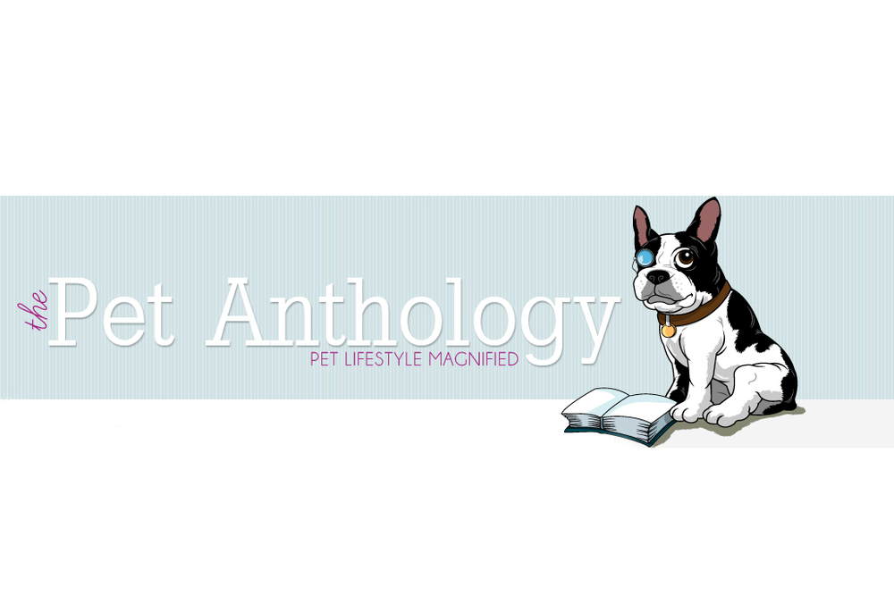 pet anthology.jpg