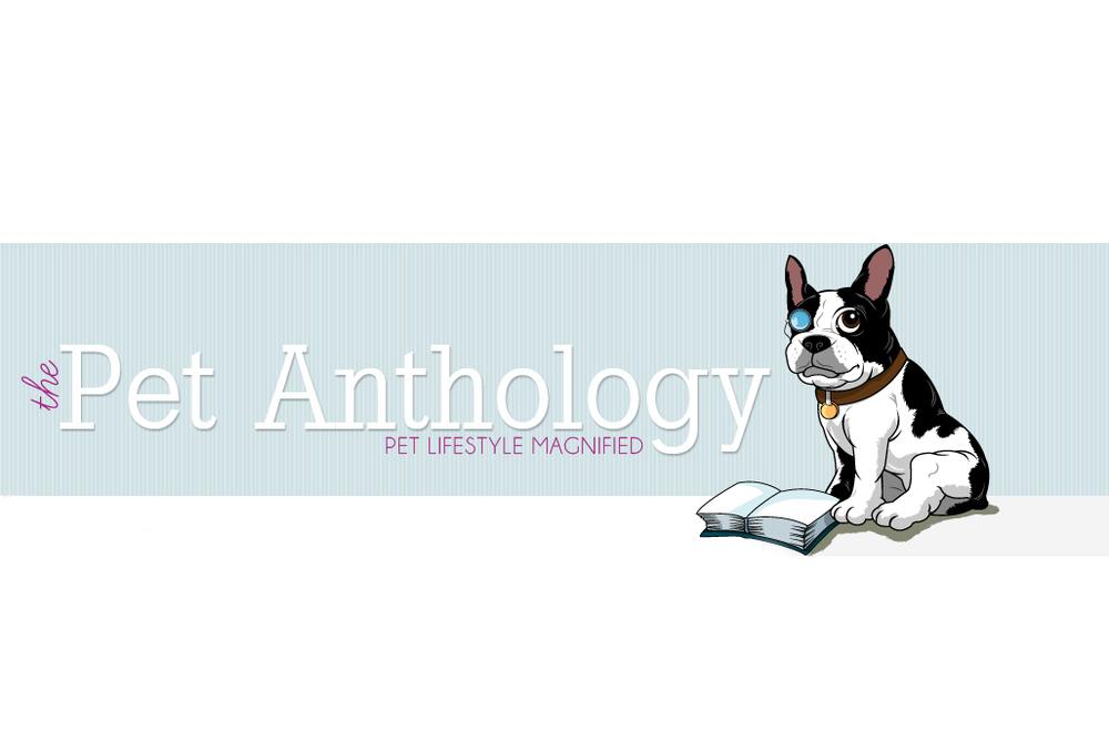 pet anthology.jpg