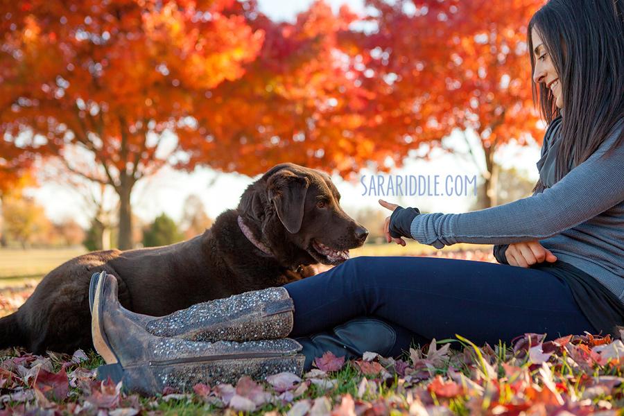 pet-photographer-dc004