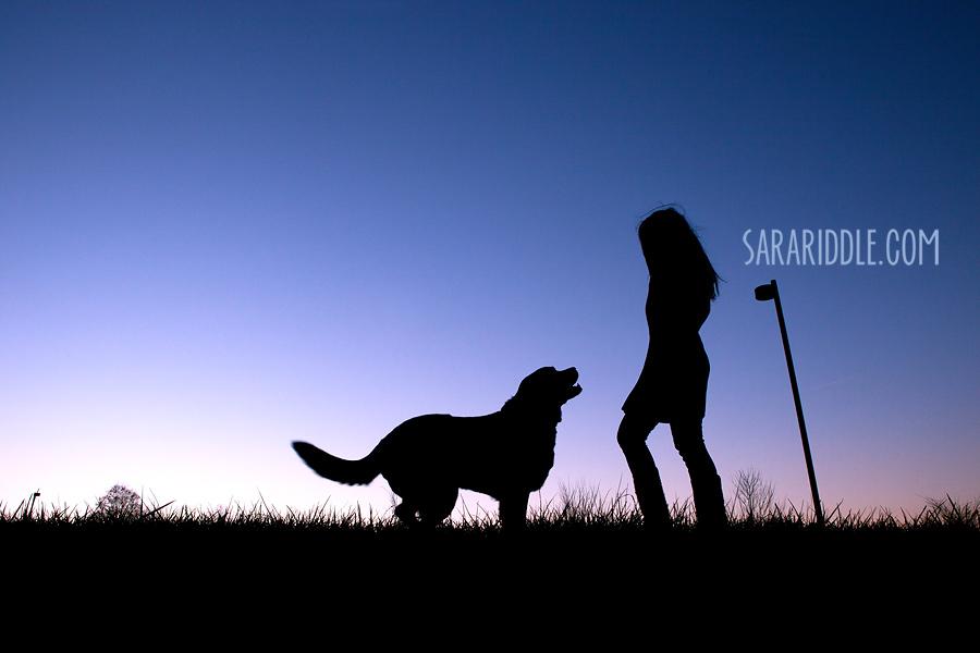 pet-photographer-dc017