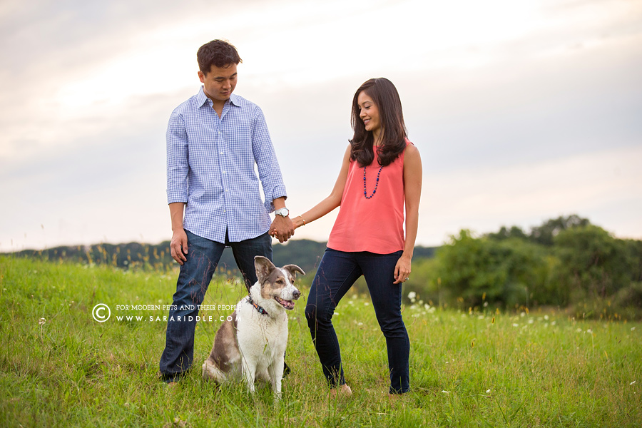 northern va family and pet photographer