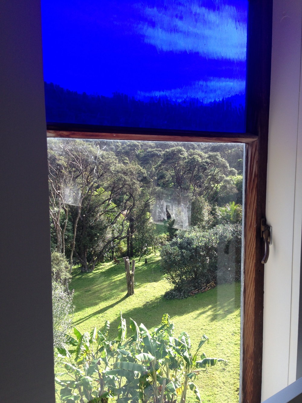 Pukeko Room - view