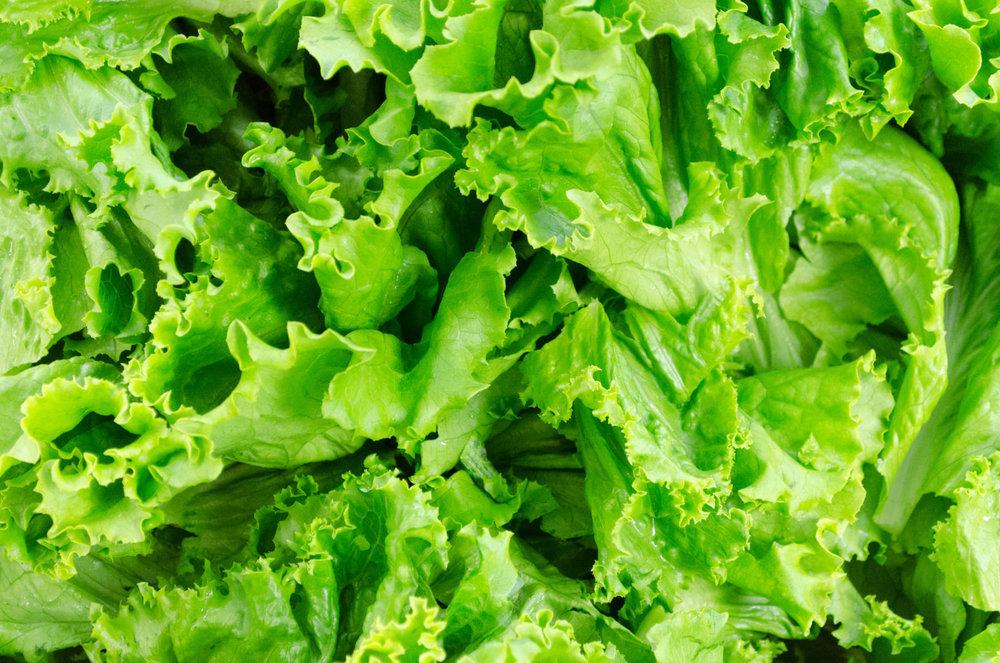 fresh_salad.jpg
