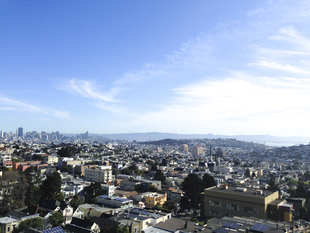 San_Francisco_Billy_Goat_Hill_Park_1