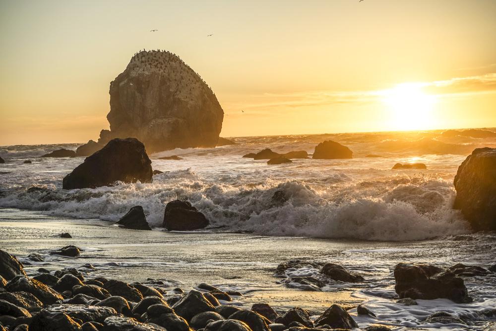 San_Francisco_Lands_End_4