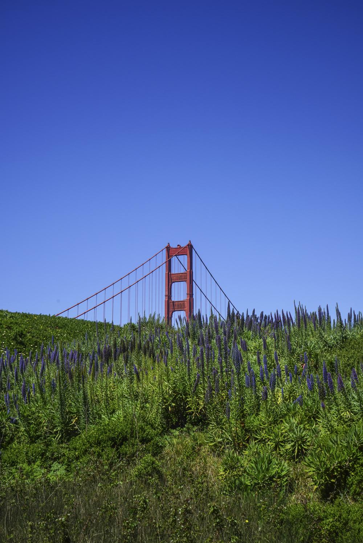 San_Francisco_Golden_Gate_Bridge_3