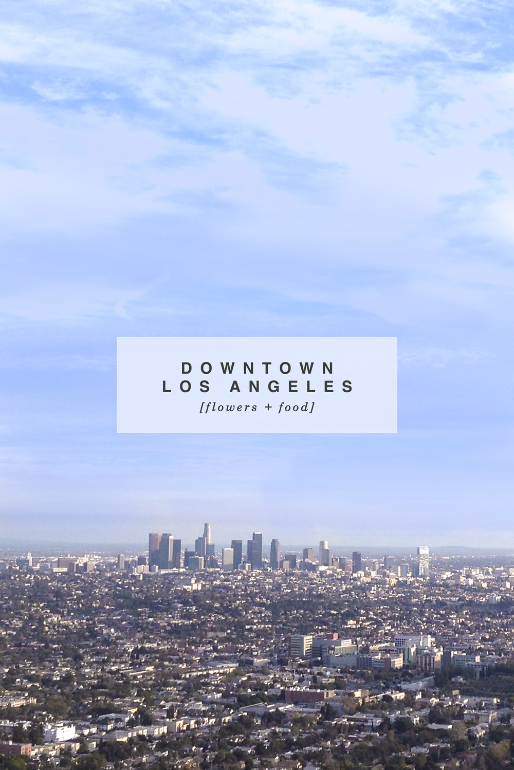 Downtown Los Angeles California Skyline
