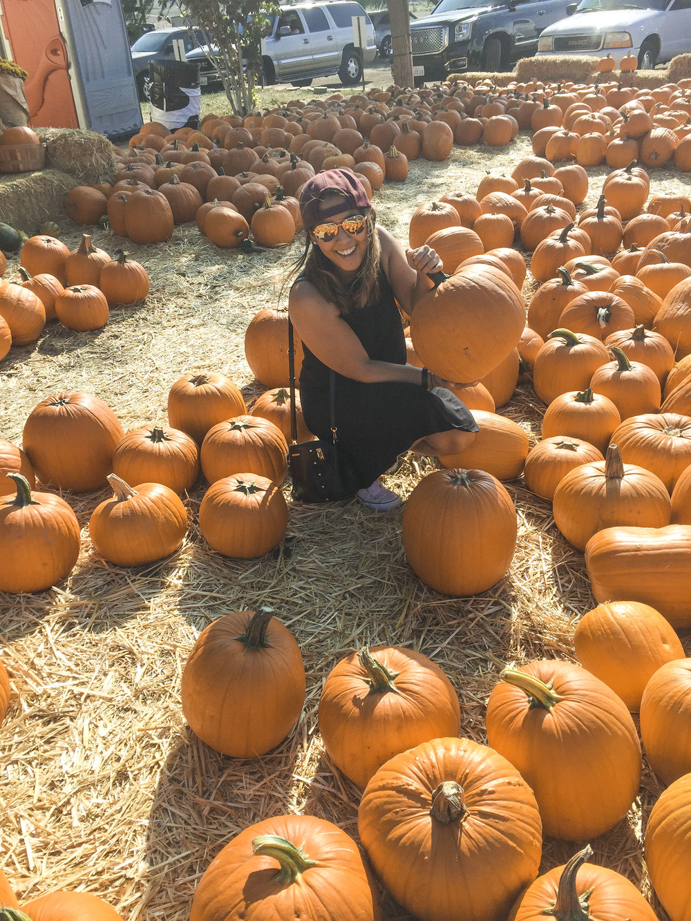 Los_Angeles_Pumpkin_Patch_4