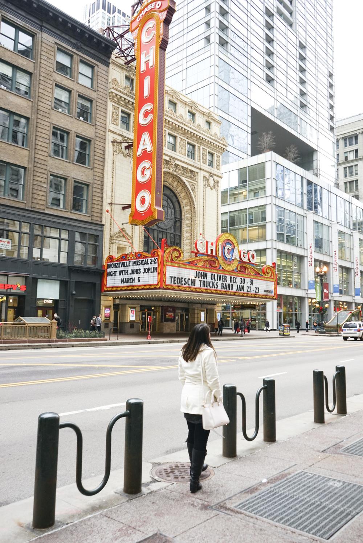 Chicago_2015_003.jpg