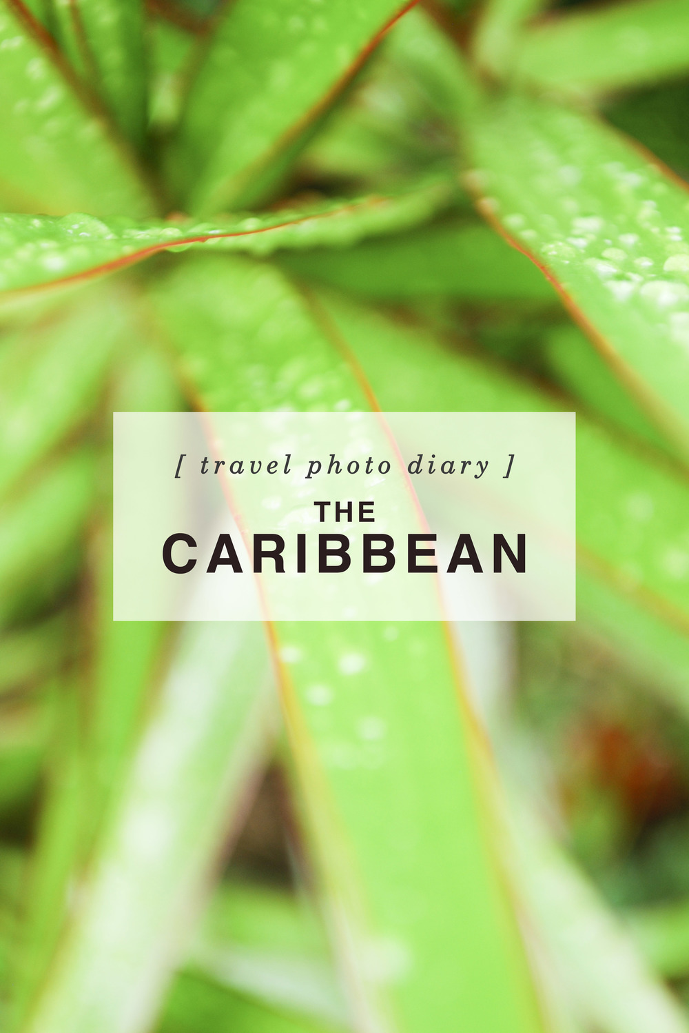 Travel Photo Diary: The Caribbean - Shannon Did What?