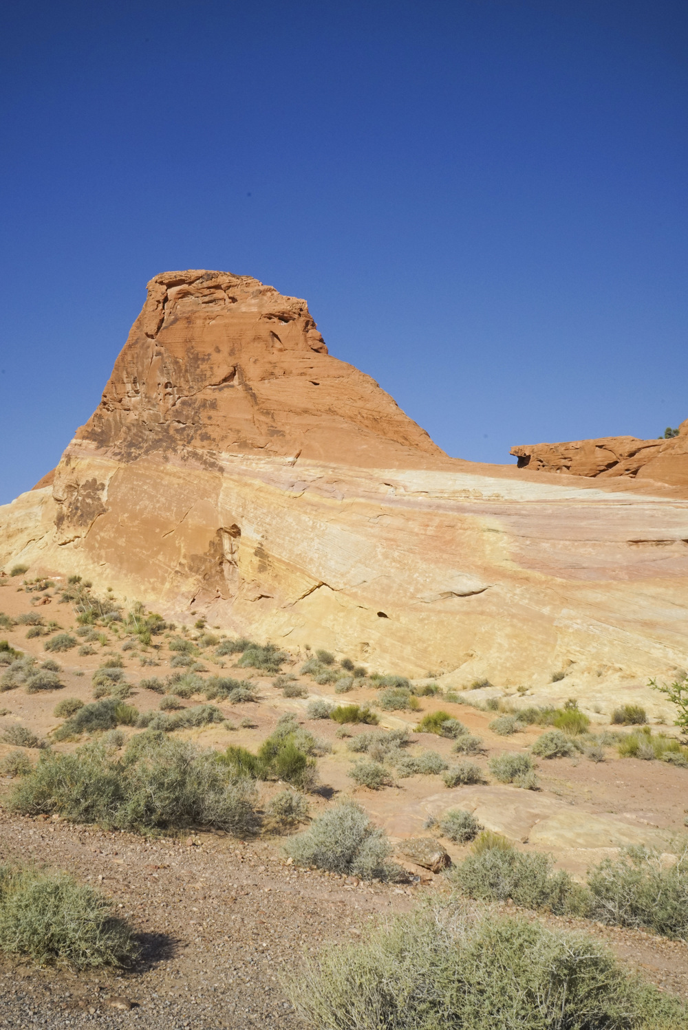 Valley of Fire - Shannon Did What?
