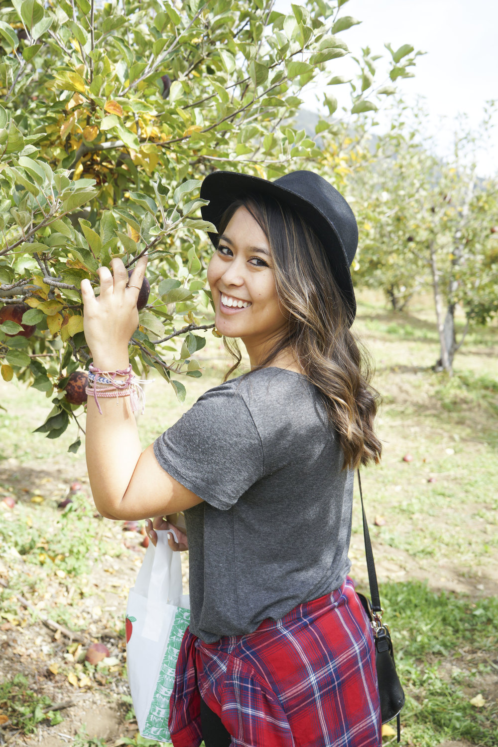 Apple_Picking_016.jpg