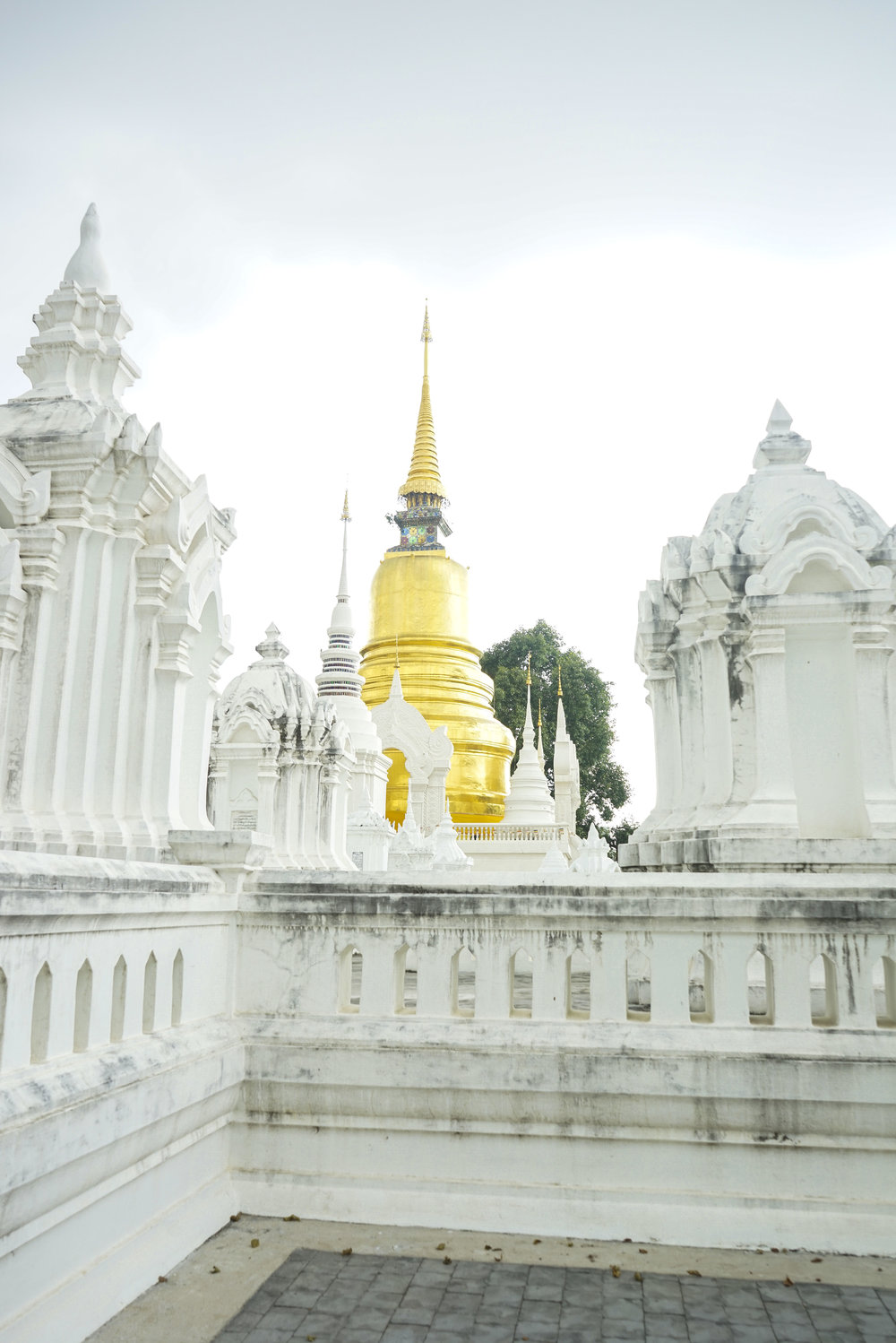 Four Things to Not Miss in Chiang Mai, Thailand - Shannon Did What?
