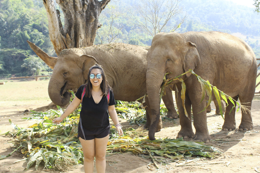 5 Day Trips from Chiang Mai, Thailand - Shannon Did What?Five Day Trips from Chiang Mai, Thailand | Shannon Did What?