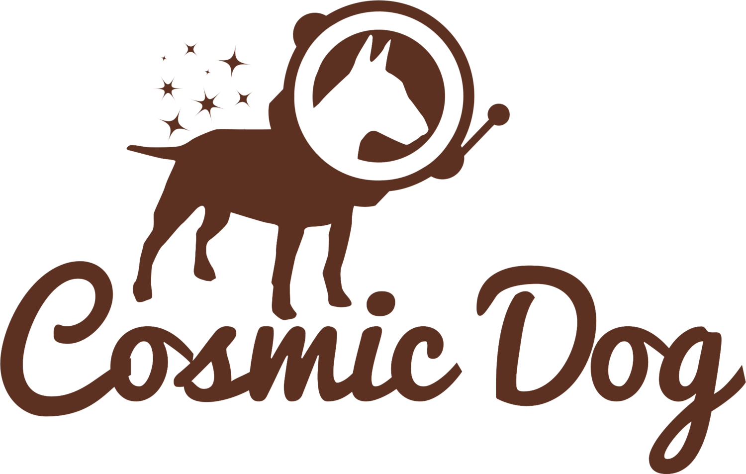 Cosmic Dog: Video & Photography