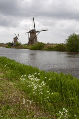 I fully expected I would also hate a river cruise. The opportunity to see Amsterdam, Bruges and Belgium, however, at tulip time with absurdly colorful flowers blanketing the countryside was enough impetus to give it a go. I came, I saw, and I want to go on another river cruise. Why?