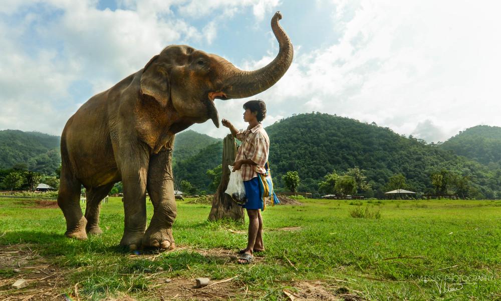 Thailand (1 of 1)-11.jpg