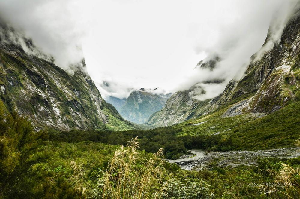 NZ (1 of 1)-5.jpg