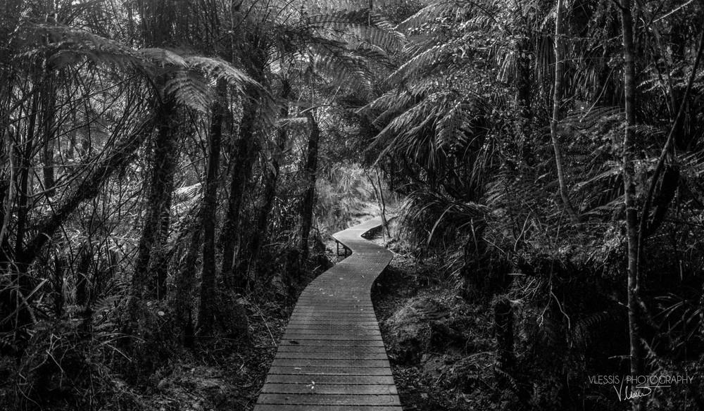 NZhaastpass (1 of 1)-3.jpg