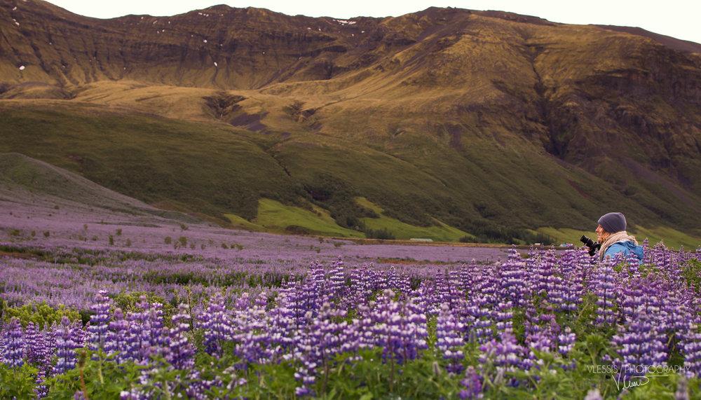 Iceland (1 of 1)-9 copy 6.jpg