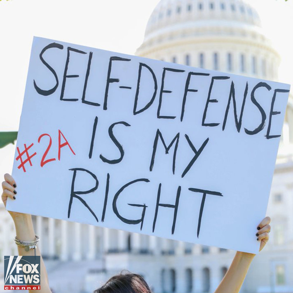 Rally in Defense of the 2nd Amendment in Washington, DC - Fox News | Video
