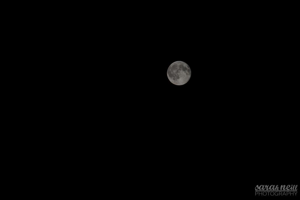 1-moon.JPG