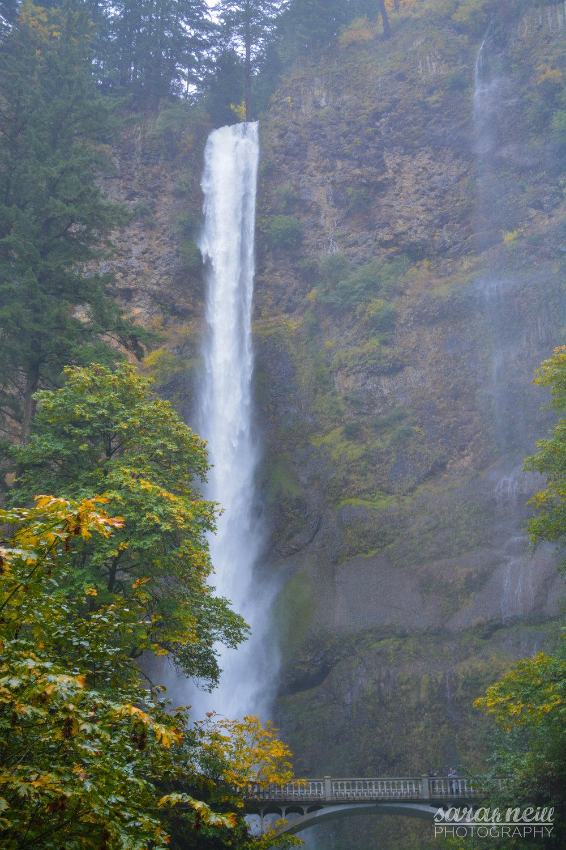 Multnomah Falls-201610-10-W.JPG