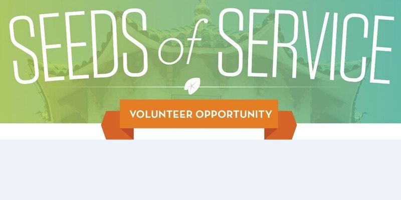 seeds of service.jpg