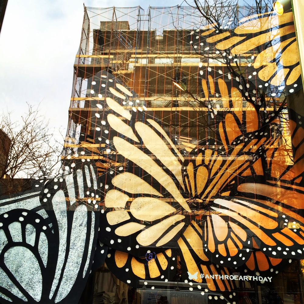 """Butterflies In-Store"" Photo by Elana Kilkenny. Taken at Anthropologie in Soho, NYC."