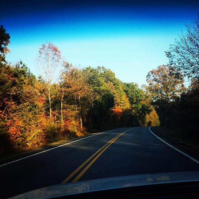 We can take the long way…. #roads #winding #curves #longdrive #lyrics #jasonmraz #quotes #mountains #autumn #leaves #fall