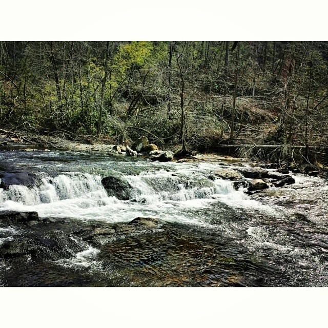 #tennessee #water #rapids #moutain #mountains #rocks #rock #green #trees #nature #outdoors